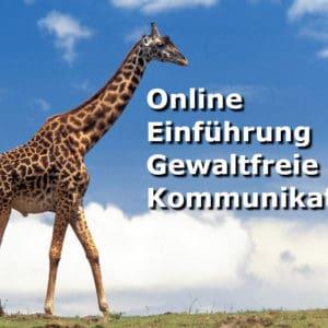 Online Einführungsseminar Gewaltfreie Kommunikation