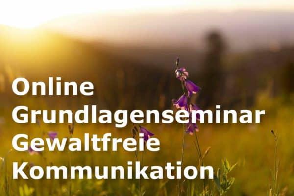 Gewaltfreie Kommunikation Grundlagenseminar
